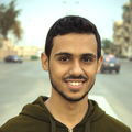 Ashraf Mahmoud
